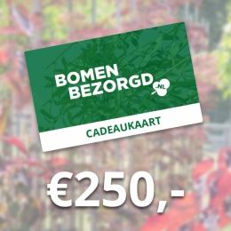 Cadeaukaart €250,-